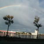 7色に輝く「虹」が東京で!