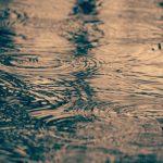 今日は生憎の雨